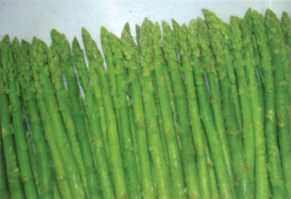... green asparagus products,China Chinese IQF green asparagus supplier