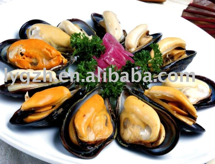 Mussel(Mytilus chilensis)
