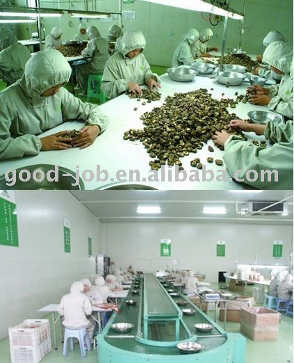 farm dried mushroom (best quality )