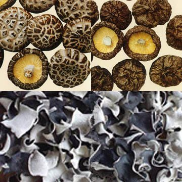 Dried Mushrooms And Dried Black Fungus
