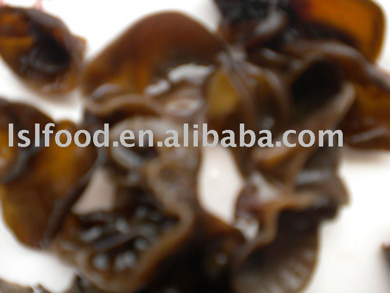 best grade log black fungus