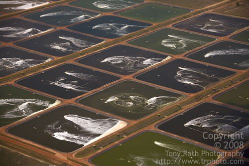 Shrimp Farm For Sale/Belize, Central America
