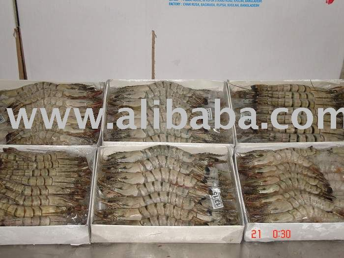 Sell Frozen Shrimp / Prawn