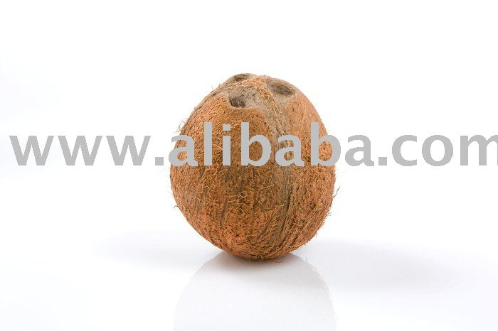 Fresh well matured coconut
