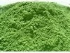 Green oat juice powder