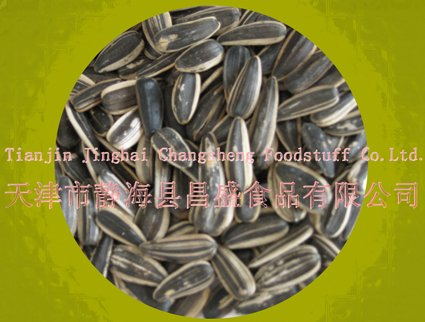 Sunflower Seed  (raw/ snack food )