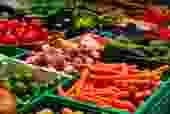 Quality Fresh vegetables and Fruits on daily supply basis