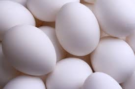 Fresh Poultry Eggs for sale