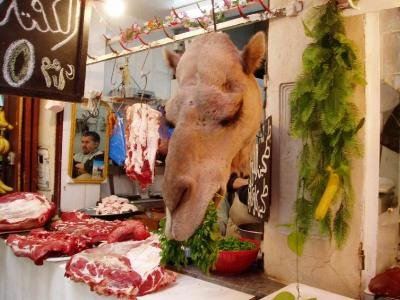 Camel Meat