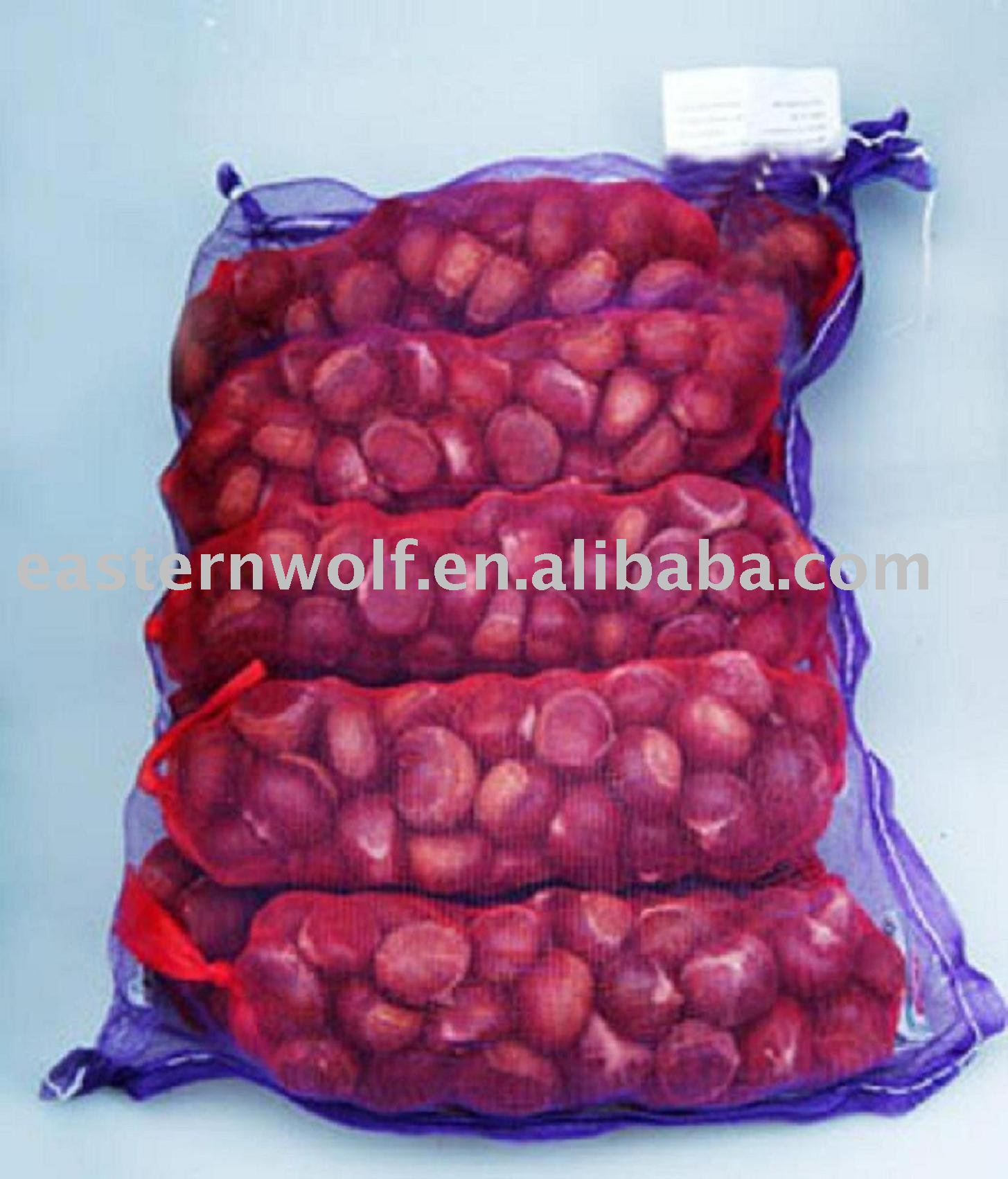 Chinese Fresh Chestnut in 25 KG/Gunny Bag