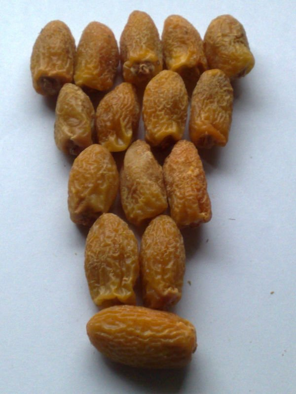 Dry friut Dry dates golden