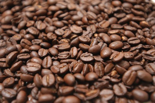 Best Aceh Robusta Coffee beans