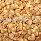 Bird Feed Buckwheat