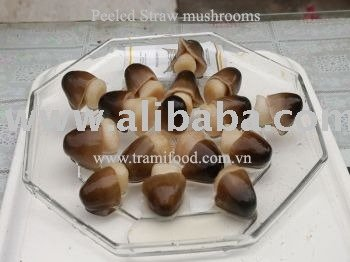 CANNED PEEL STRAW MUSHROOM