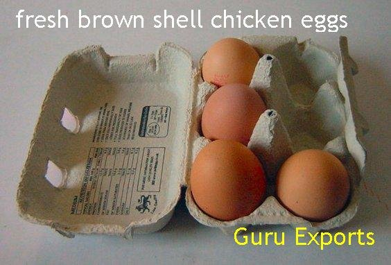 SUPPLY & EXPORT OF FRESH INDIAN POULTRY FARM EGGS