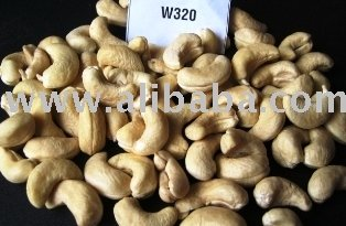 Vietnam Cashew Nut Kernels W320