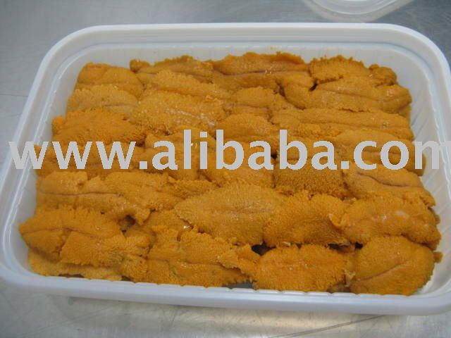 SEA URCHIN ROE OF FRESH REFRIGERATED