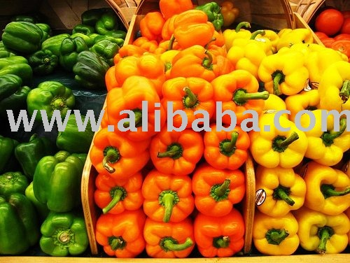 Color Bell Pepper