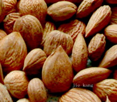 Bitter Almond