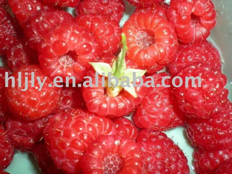 Honey Berry Fruit http://www.21food.com/products/fruit-tea---wild-berry-253420.html