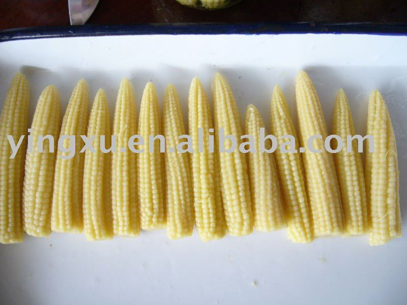 Canned baby corn(young corn,baby corn)