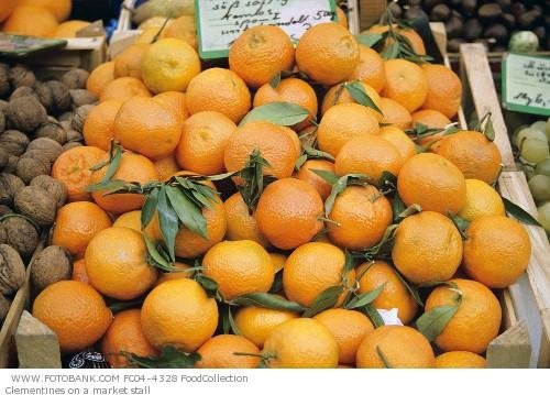 Citrus and other fruits for sale