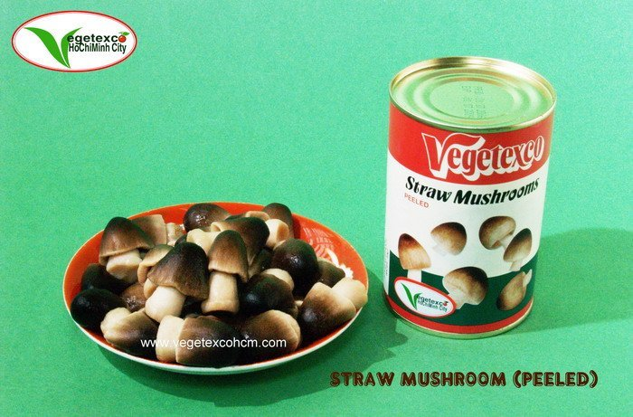 CANNED PEELED STRAW MUSHROOM