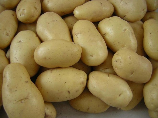 Best Quality Potato(100% Quality) for Exportation