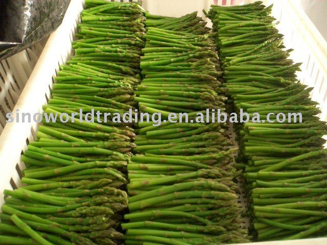 IQF green asparagus vegetable products,China IQF green asparagus ...