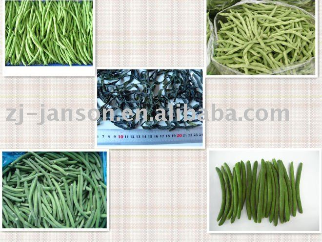Dehydrated vegetable-Chinese Dried Green String Beans