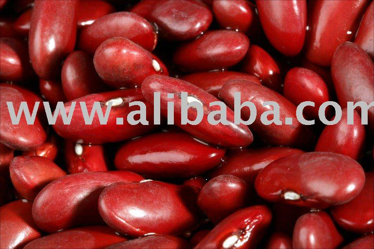 Red and white kidney beans for sale