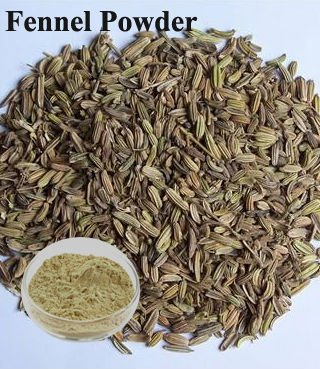 Natural Fennel Powder 40Mesh/80Mesh/100Mesh