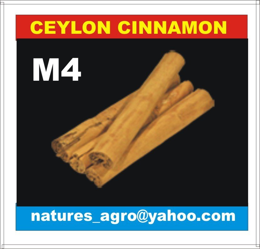 World Best CINNAMON from Sri Lanka - M4/M5/C4/C3/Quillings