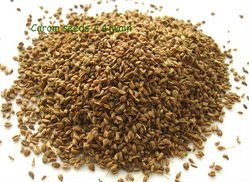 Ajwain ( Bishop's weed)