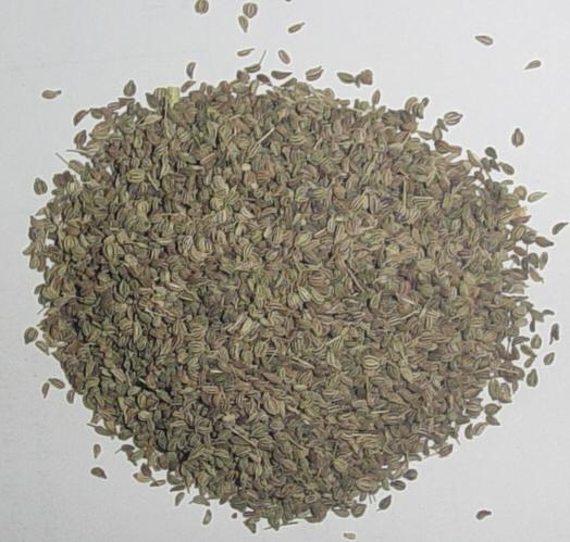 Ajwain (Bishop's weed)