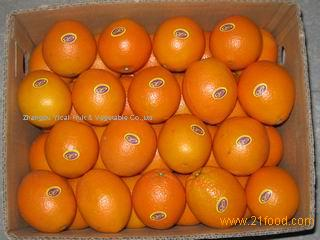 Tasty Navel orange