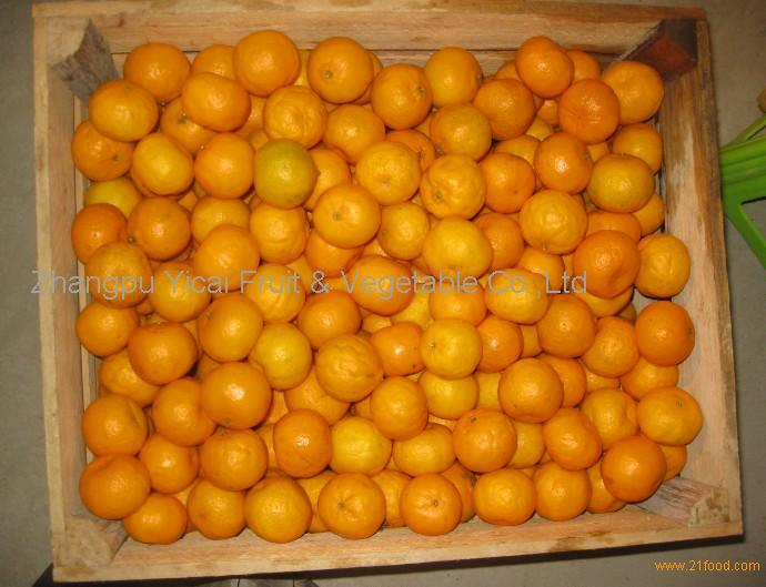 Nanfeng orange35