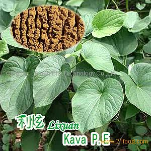 Kava Extracts (Kavalactones 30%)