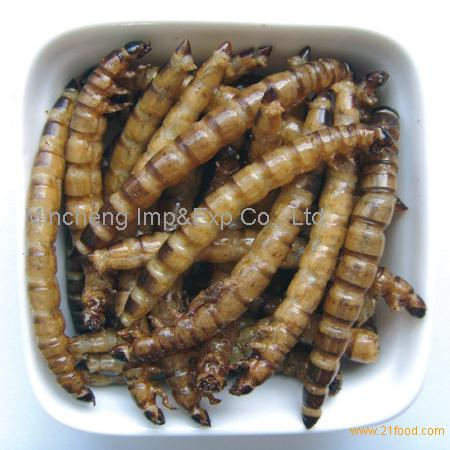 Dried superworm-pet food