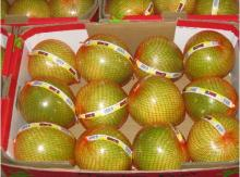 Honey pomelo9