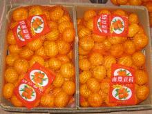Nanfeng orange51