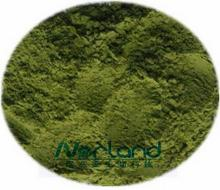 Wheat Grass Juice Powder-Organic