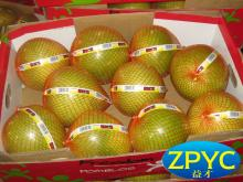 chinese fresh honey pomelo