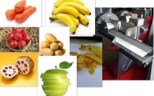 vegetable slicing machine