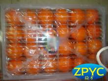 chinese navel oranges