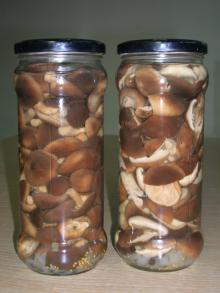 canned shiitake marinated
