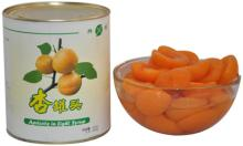 Canned Apricot in Syrup