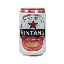 Beer Bintang 330ML Can