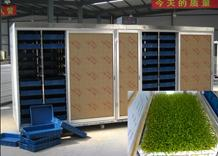 Sale full automatic wheat barley Grass planting and Growing Machine