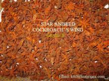 supply star aniseed cockroach wing cheap price